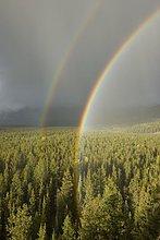 Regenbogen und Regen über Berg im Jasper-Nationalpark in Alberta Kanada
