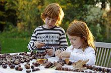 Mädchen und Junge spielen im Garten mit Kastanien, Kastanienfiguren, Kastanienmännchen