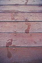 Vereinigte Staaten von Amerika,USA,Winter,bedecken,See,Dock,Fußabdruck,Lake Whatcom,Frost