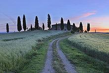 Bauernhaus,Baum,Fernverkehrsstraße,Feld,schmutzig,Italien,Pienza,Toskana