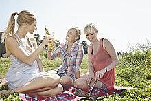 Frau ,Picknick ,jung ,trinken ,Bier
