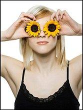 Frau ,halten ,frontal ,jung ,Sonnenblume, helianthus annuus