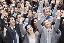 Mensch ,Menschen ,lächeln ,jubeln ,heben ,Menschenmenge ,Menschlicher Arm, Menschliche Arme ,Business