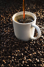 Kaffeebohne ,Studioaufnahme ,Tasse ,eingießen, einschenken ,Kaffee ,Bohne