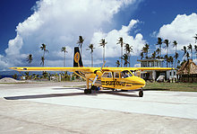 Flugzeug ,Sonnenblume, helianthus annuus ,Asphalt ,Flugreise ,Fiji