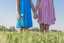Schwester ,halten ,Zwilling - Person ,Feld ,Flachwinkelansicht ,Sonnenlicht