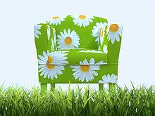 stehend ,Muster ,Gänseblümchen, Bellis perennis ,Sessel ,Gras