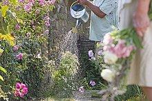 Senior,Senioren,Wasser,Mann,Schönheit,Blume,Close-up,Garten