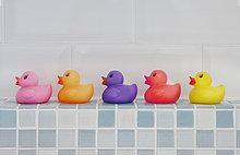 Farbaufnahme, Farbe ,Ente ,Gummi