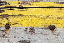 Holzbrett,Brett,gelb,Close-up,Verwitterung,Farbe,Farben,grau,bemalen