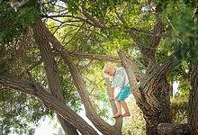 Junge - Person,Baum,jung,klettern