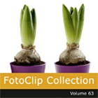 Fotoclip Collection Vol.  63