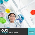 R & D Experts