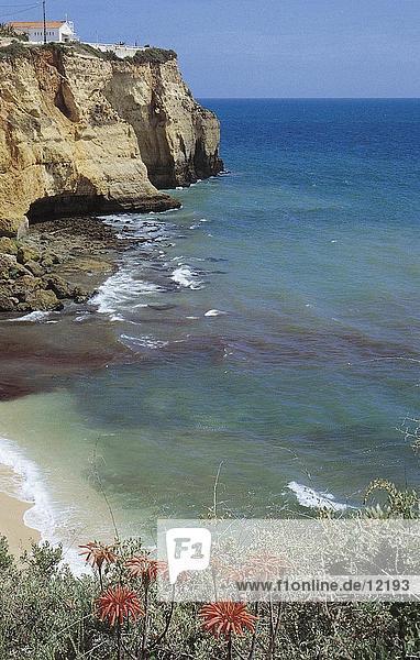 Cliff in der Meer Küste  Algarve  Portugal