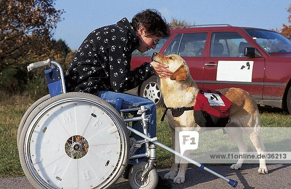 Woman sitting in wheelchair and stroking dog