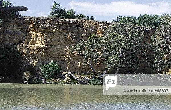 Gelbe Klippen am Flußufer  Murray River  Australien