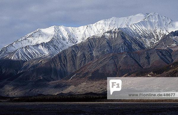Schneebedeckte Gebirge  Alaska Range  Alaska  USA
