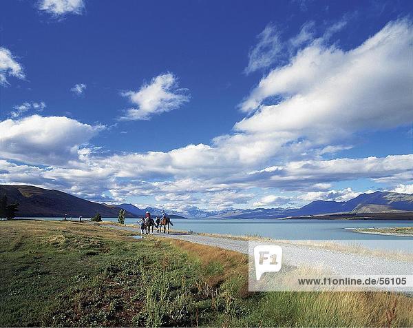 Two people riding horses at the coast  Lake Tekapo  South Island  New Zealand