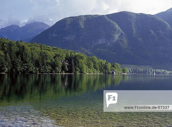 Bäume spiegelt sich in den See mit Bergen im Hintergrund  Bohinj See  Nationalpark Triglav  Slowenien