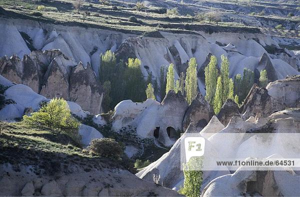 Erhöhte Ansicht von Pflanzen auf Landschaft  Kappadokien  Türkei