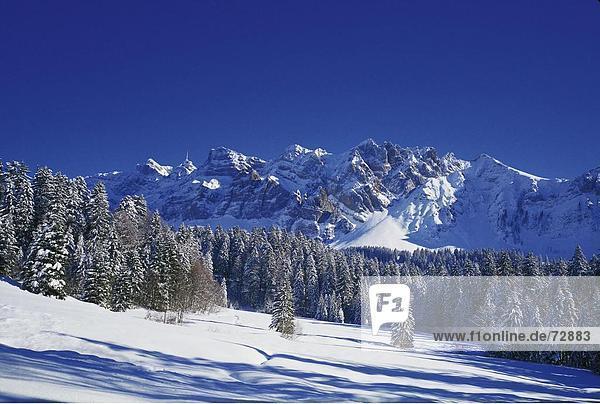 Europa Winter Wohnhaus Gebäude Schnee Schweiz