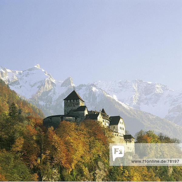 Vaduz Hauptstadt Berg Palast Schloß Schlösser Wald Holz Herbst
