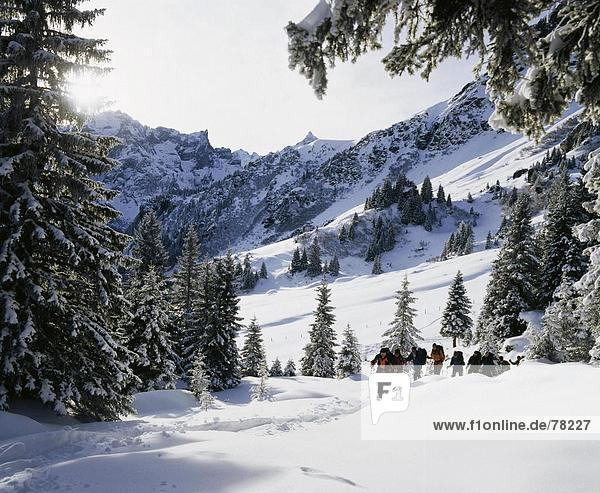 10651267  alpine  Alps  mountains  Bernese Oberland  spare time  group  canton Bern  Rosenlaui  snow  snow shoes  snow shoe ru