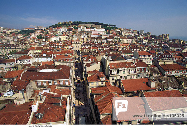 View of the city  Lisbon  Portugal
