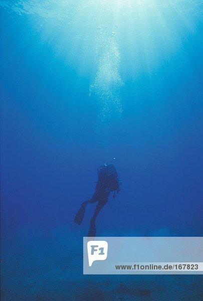 Sport & Erholung  Scuba Diving