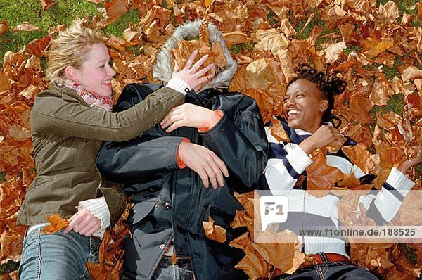Leute  die in Blättern spielen