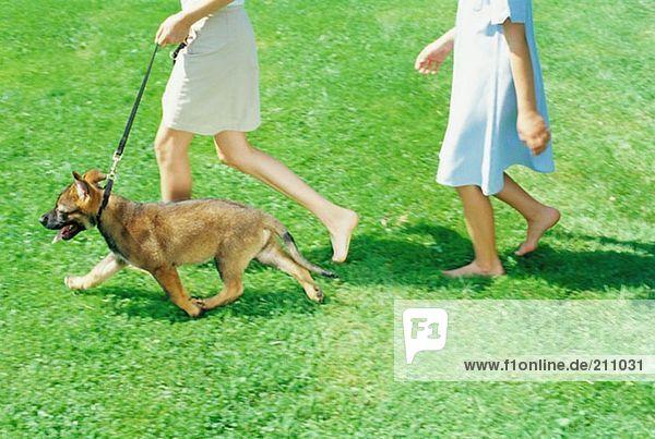 Mädchen  die mit einem Welpen spazieren gehen