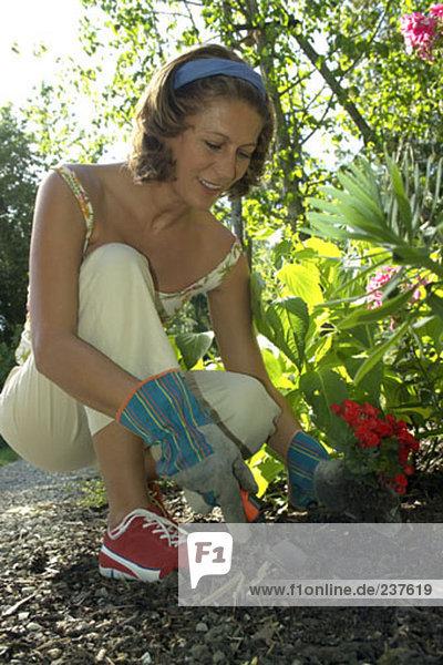 Blumenbeet Frau Gartenbau