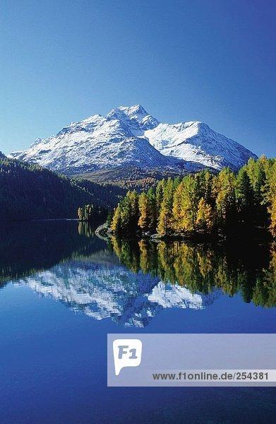 10814110,Alpin,Berg,Bergpanorama,Blatt