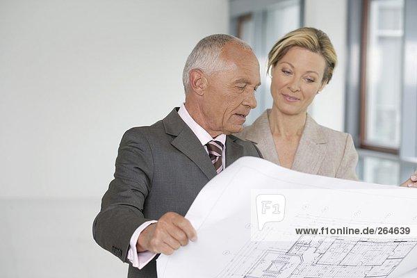 Manager und Geschäftsfrau blicken auf einen Bauplan  fully_released
