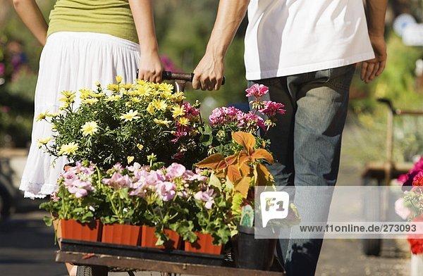 Gartengeschäft 2