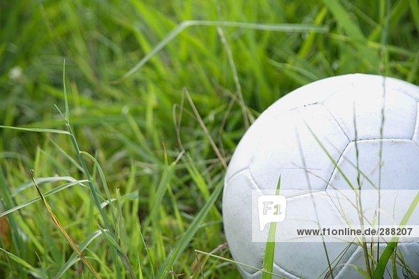 Fußball Ball im Gras liegend