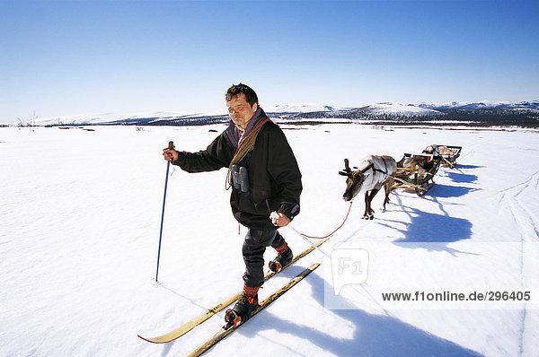 Ein Mann auf Skiern mit einem Hirsch und Schlitten hinter.