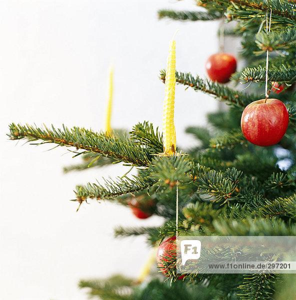 Kerzen und Äpfel Dekoration eines Weihnachtsbaumes.
