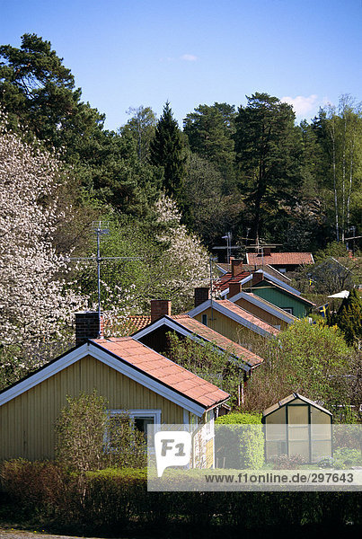 House roofs.