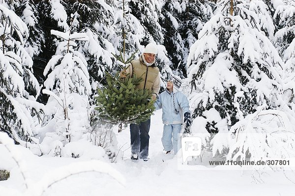 Österreich  Salzburger Land  Vater und Sohn (6-7) mit Weihnachtsbaum
