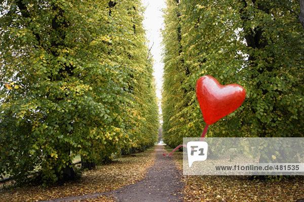 Heart shaped red Ballonfahren über ländliche Pfad im Herbst Heart shaped red Ballonfahren über ländliche Pfad im Herbst