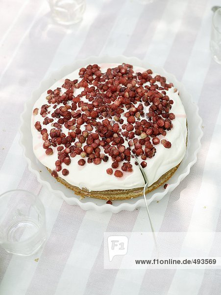 Ein Kuchen mit roten Beeren.