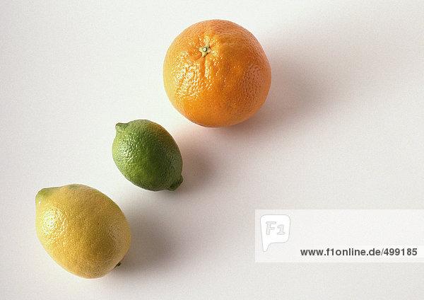 Zitrone  Limette und Orange