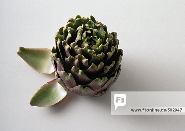 Artichoke with two artichoke leaves  close-up  white background