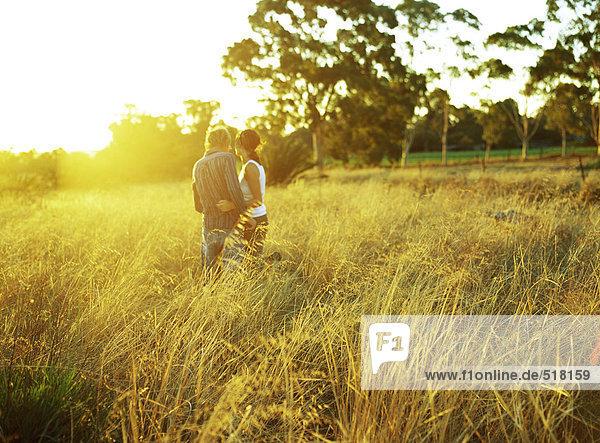 Paar im hohen Grasfeld stehend  Rückansicht