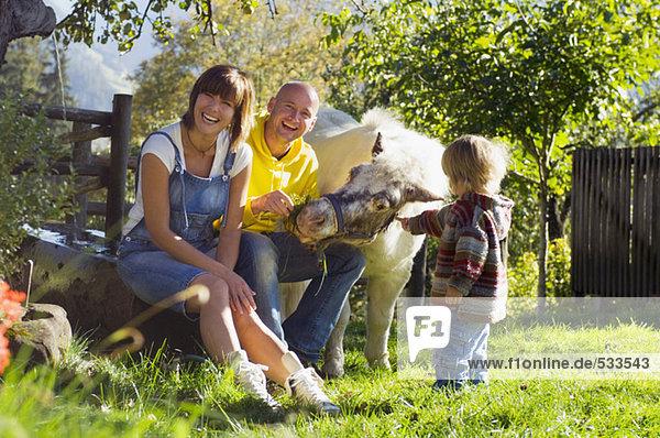 Eltern mit Kind im Garten sitzend  mit Pony spielend