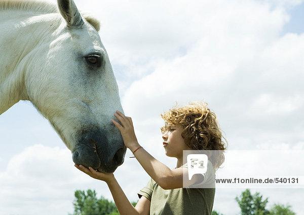 Boy Petting Pferd