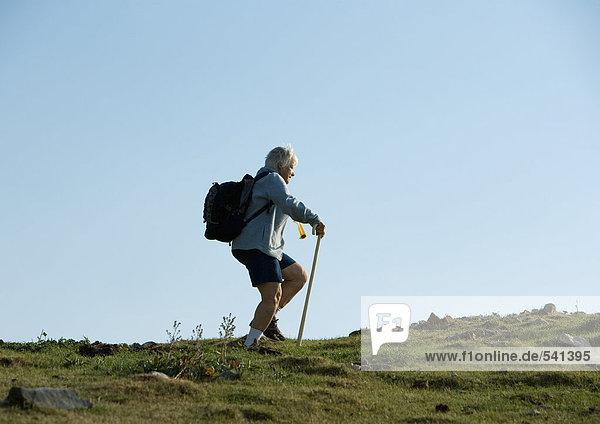 Wanderer mit Gehstock