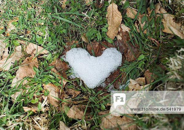 Eis-in Form von Herzen im Gras