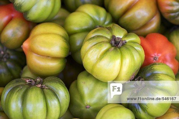 Grüne Fleischtomaten (bildfüllend)